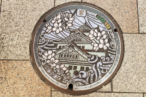 Pretty sewer lid