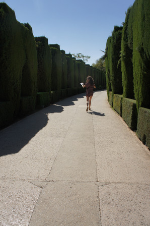 We visited the Alhambra, the famous palace/fortress in Granada.