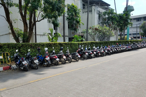 Rows of bikes