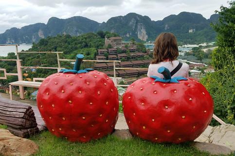 Strawberry views forever