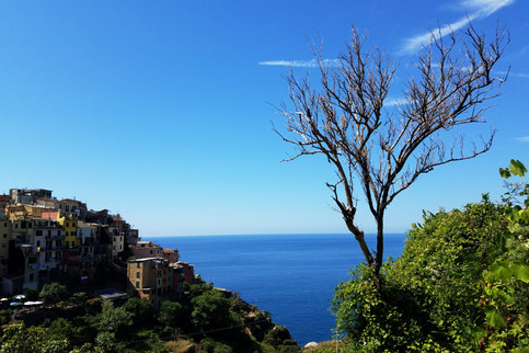 20170823-29_Cinque Terre-31.jpg