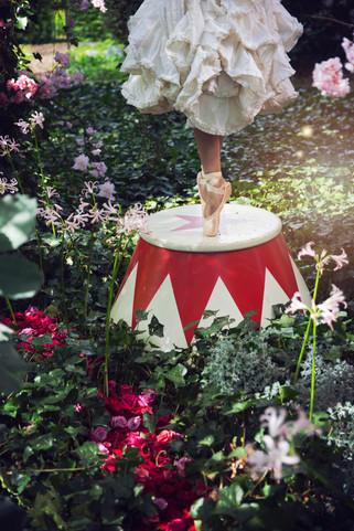 Circus Fairy Tail