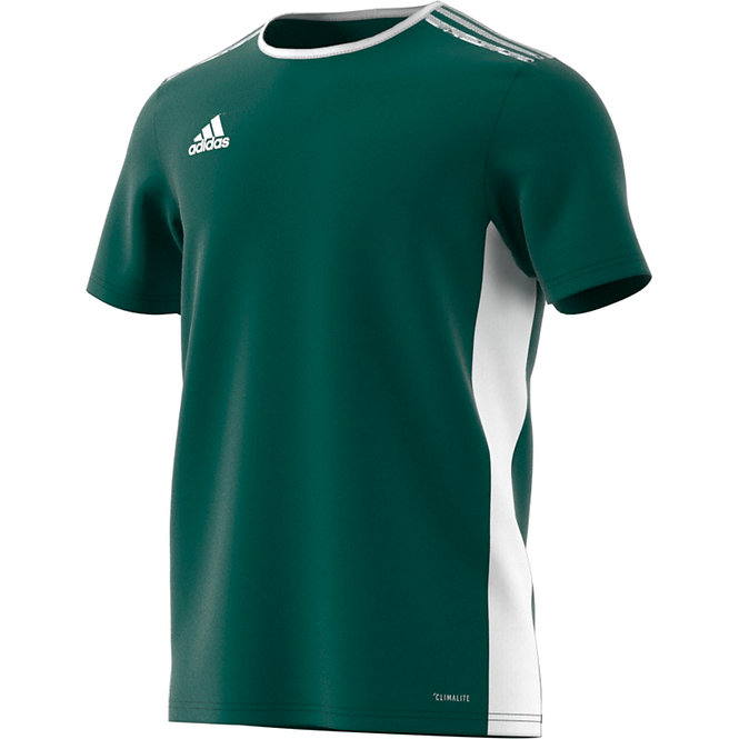 Entrada 18 Jersey Collegiate Green/White