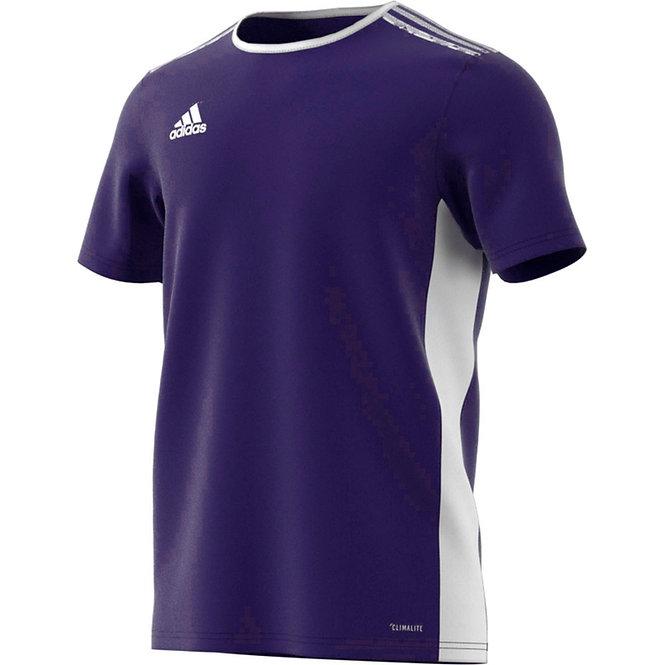 Entrada 18 Jersey Collegiate Purple/White