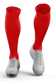WPSA Soccer Game Socks
