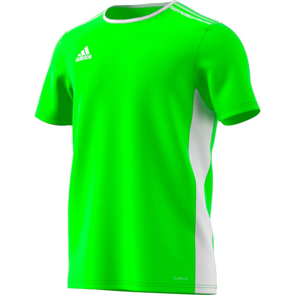 f6ce951d38bd Entrada 18 Jersey Solar Green/White | golatisports