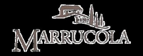 LogotraspOK.png