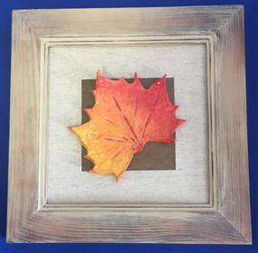 clay leaf mounted.jpg