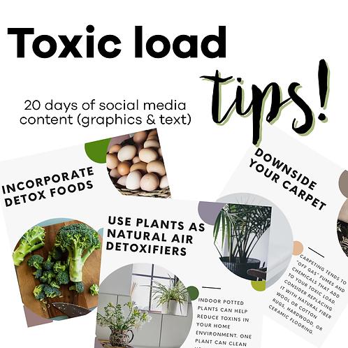 Toxic Load Tips Workshop