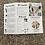 Thumbnail: Crunchi TriFold Brochure