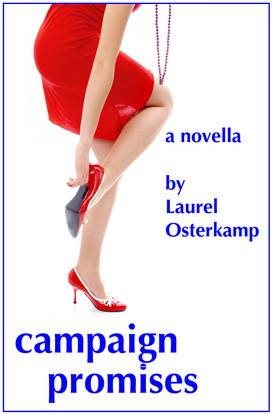 Campaign Cover Kindle Revised 2013 .jpg