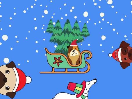 Holiday Dog Show!