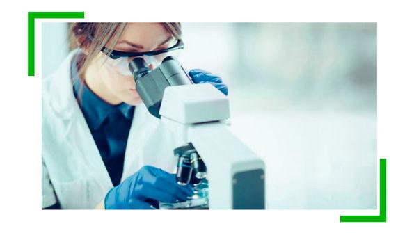 laboratorio veterinario, laboratório vet