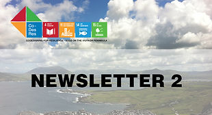 Newsletter_02_website image.jpg