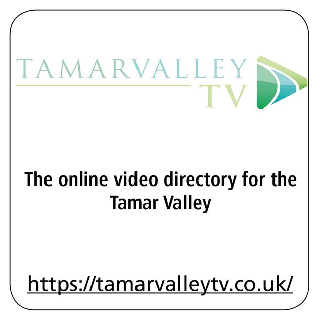 Tamar Valley TV