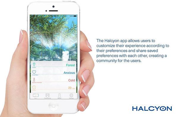 Halcyon 006.jpg