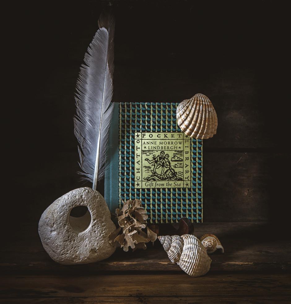 Keeping Wonder Alive & A Book Giveaway!