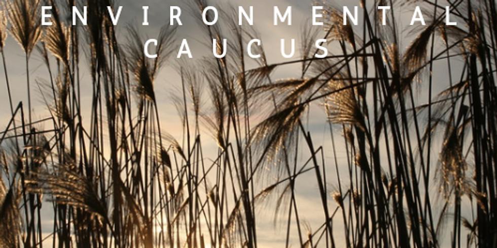 Young Democrats of SC Environmental Caucus April Meeting
