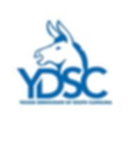 YDSC Logo smaller.png