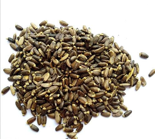 Розторопша плямиста (насіння)