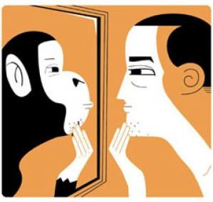 Los animales como espejo para el autoconocimiento