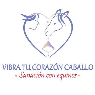 Logo VTCC para web.png