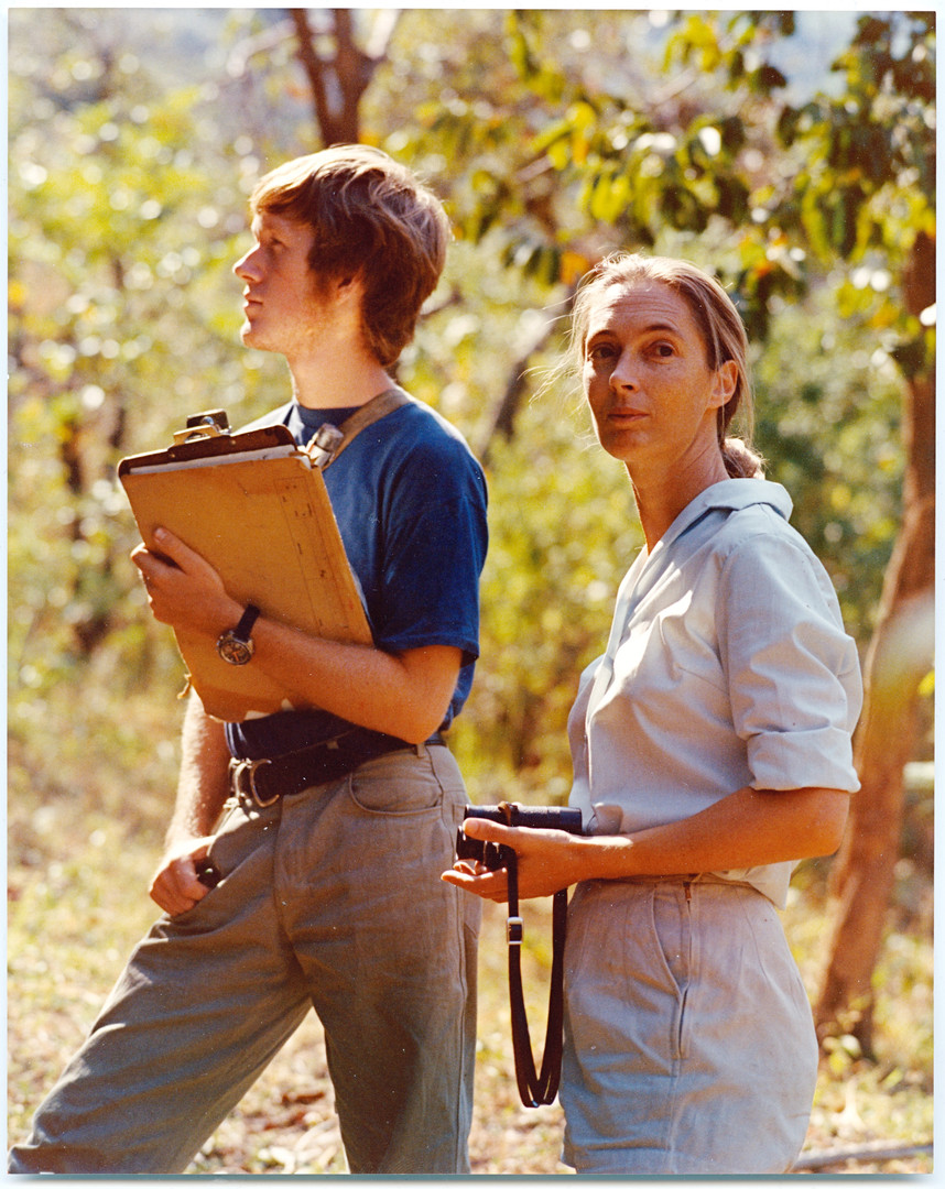 Jane and me in the Gombe forest observing chimpanzees together during my students days. Photo by Aadje Geertsema, 1973.
