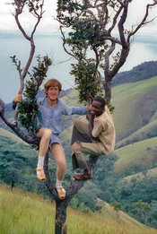 Hamisi Mkono and I climb a small tree high above the valley as we imitate our subjects. Photo courtesy of John Crocker, 1974.