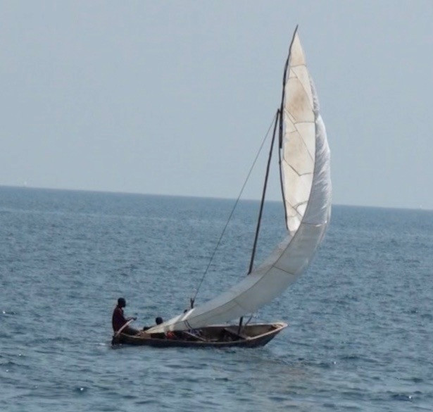 Wind-powered transportation along the lake: hand-crafted sailboat returning from Kigoma. Photo by John Crocker, 2009.