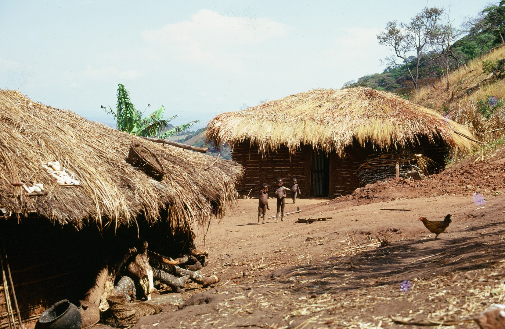 Hamisi Matama's homestead near Bubongo village. Photo by John Crocker, 1973.