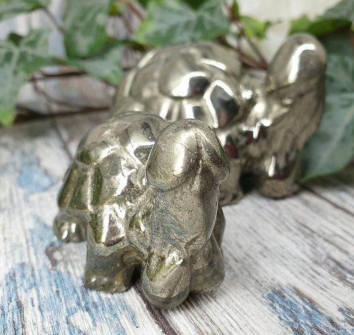 Pyrite Penis Turtle