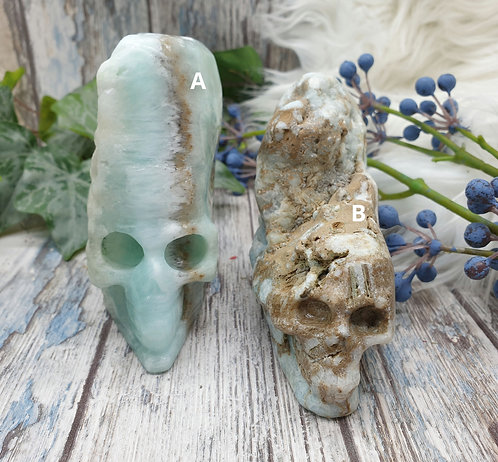 Caribbean Calcite Skull