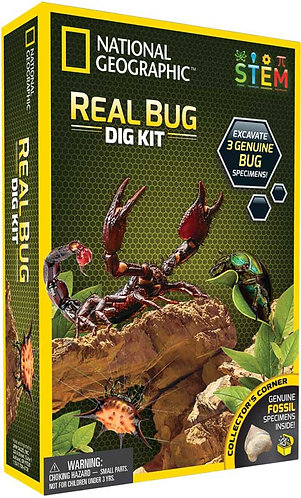 Bug kit National geographic