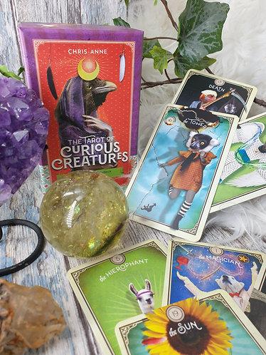 Tarot of Curious Creatures