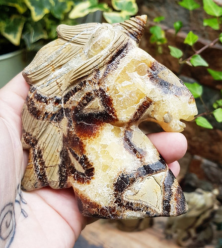 Septarian with Calcite unicorn