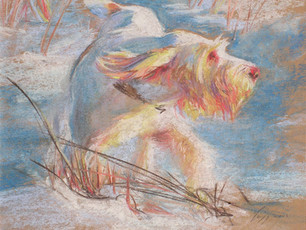 On the pastel, December Sunset, by Rosalind Trigg