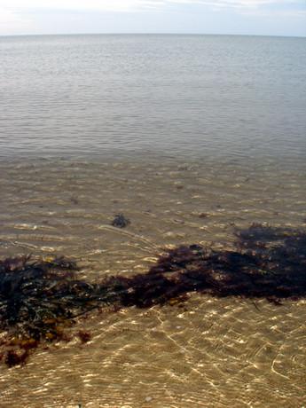 BEACH 2006