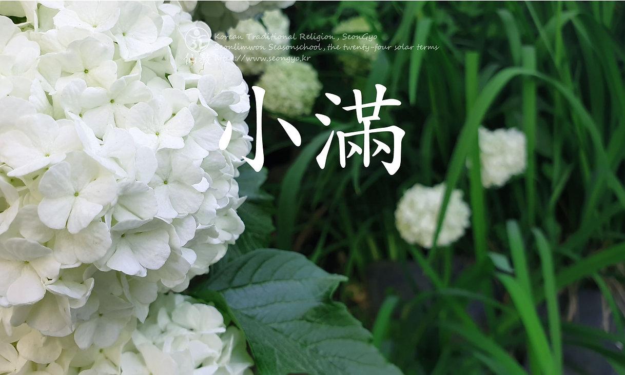 소만-小滿-24절기-선도수행-선교총림-선림원-선교-仙敎.jpg