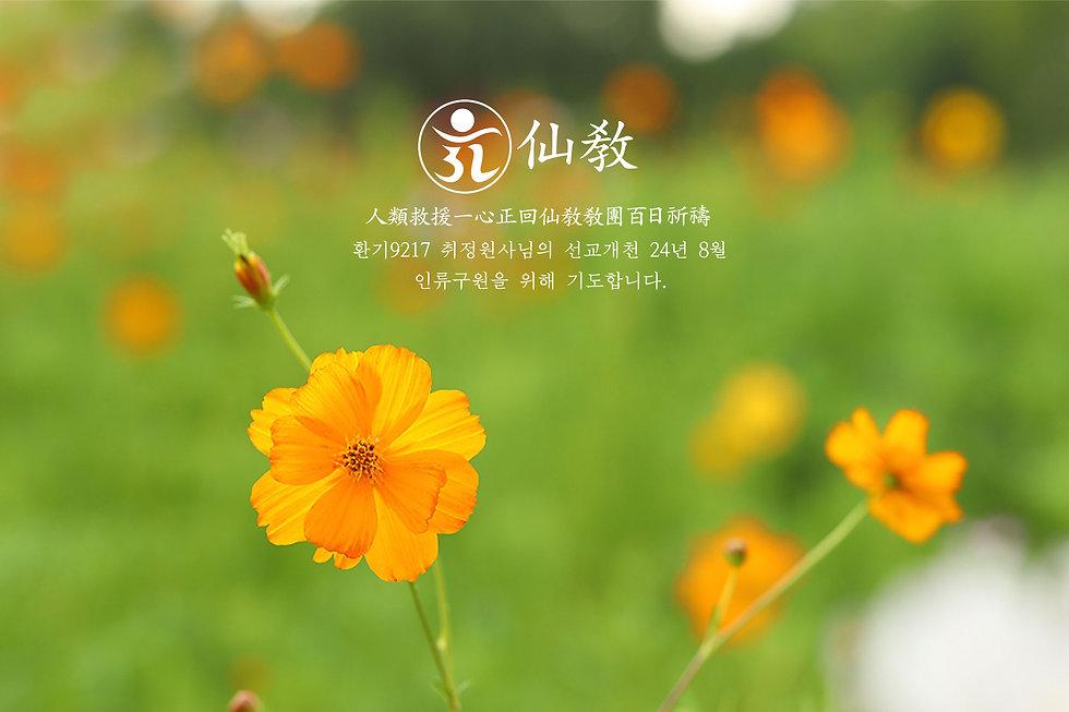 선교공지-2020년-8월-3.jpg