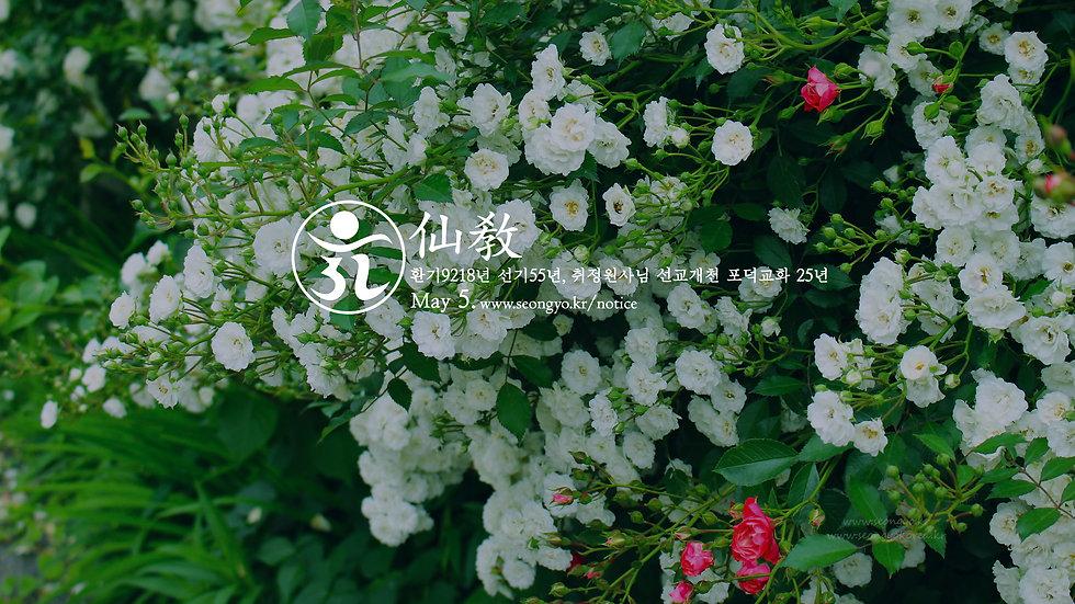 선교공지-5월-2.jpg