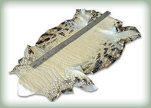 crocodile_skin.jpg