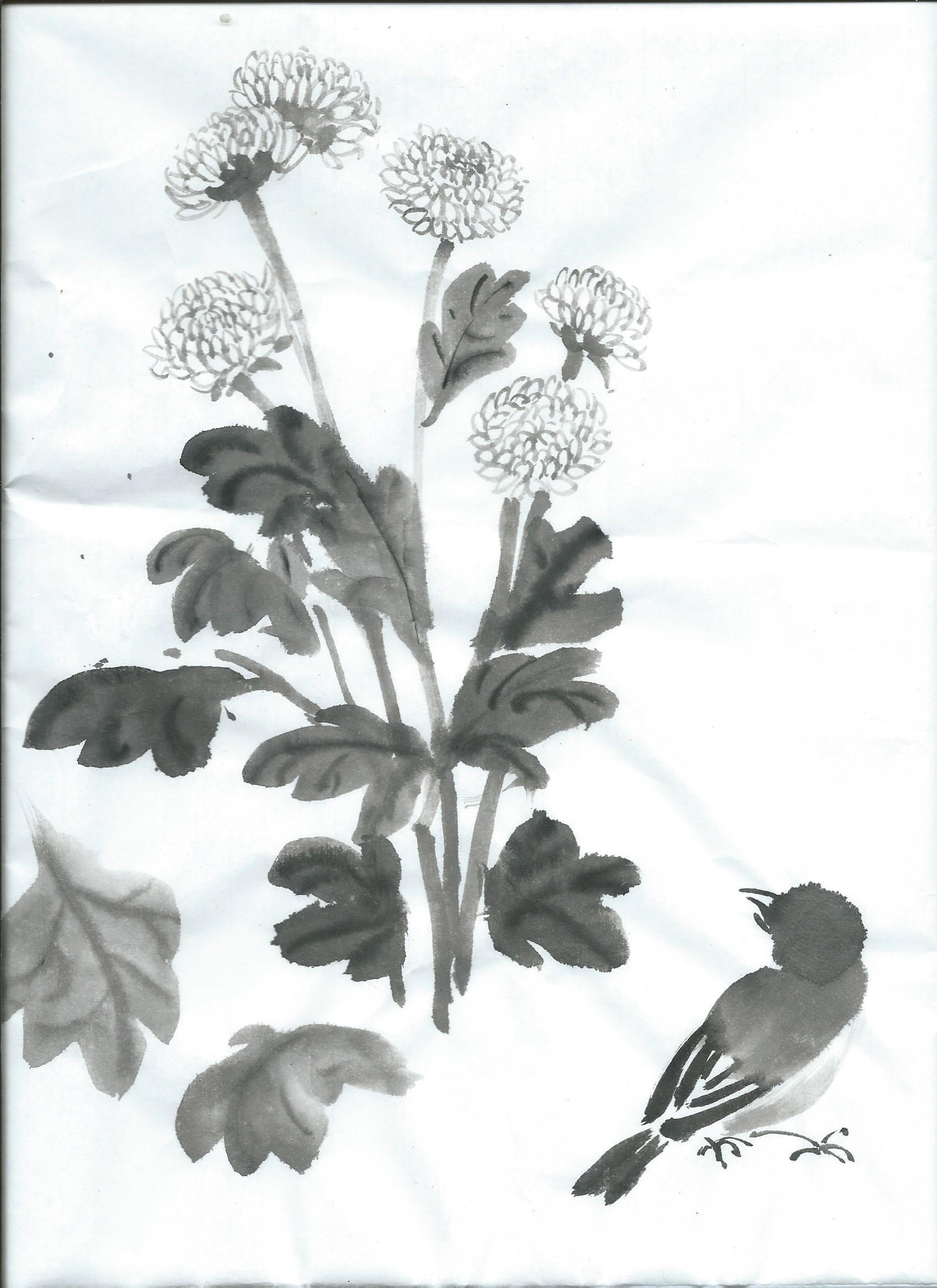 oiseai et plant