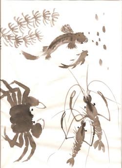 crab crevette 001