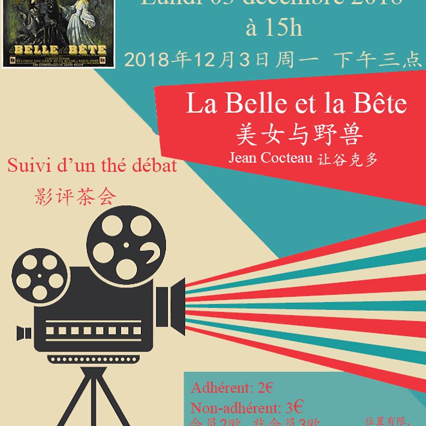Projection Film La belle et la bête