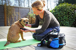 canine dog physio electrotherapy