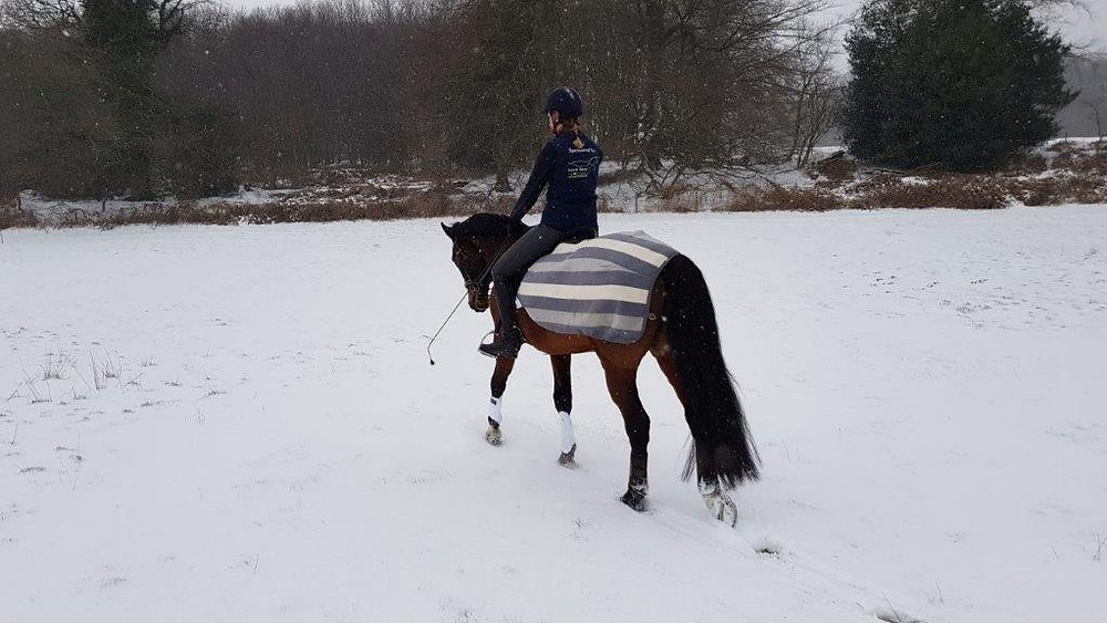 Training in the snow for british eventing