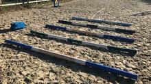 Winter Poles