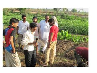 Amrut Mitthi Revitalizes Soil to Pristine Condition