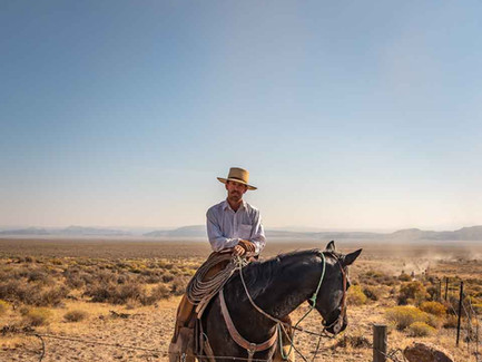 Town of Fields, Eastern Oregon - Cowboy Posing on a Horse During a Cattle Drive