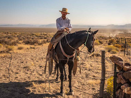 Town of Fields, Eastern Oregon Desert - Cowboy Posing on a Horse During a Cattle Drive